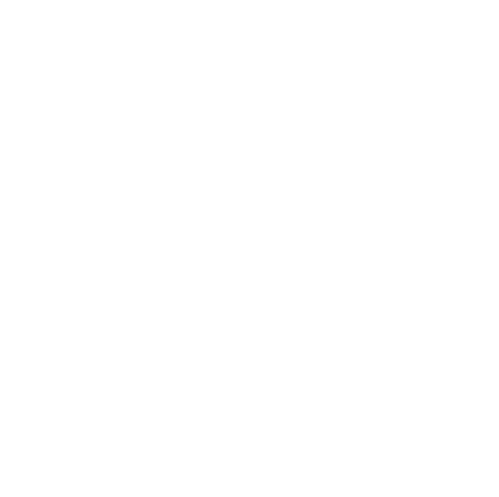 The Guild of Master Craftsmen white